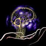 脳をプログラムする。思い通りの人生を!